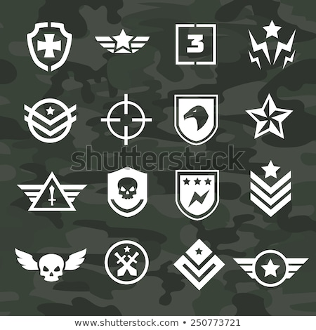 эмблема армии череп щит дизайна фон Сток-фото © popaukropa