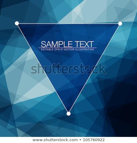 Vektor színes terv ötlet dinamikus körök Stock fotó © designleo