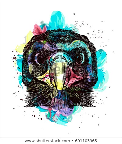 T-shirt design with graphic of falcon in front Stock photo © bluering