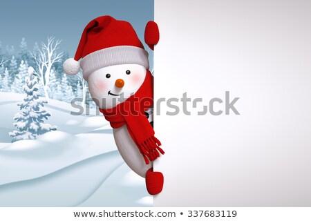 Engraçado boneco de neve feliz inverno paisagem Foto stock © Kotenko
