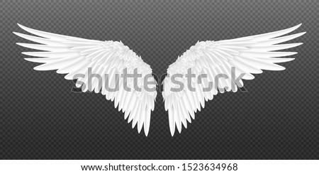 Par ángel águila aves alas madera Foto stock © Krisdog