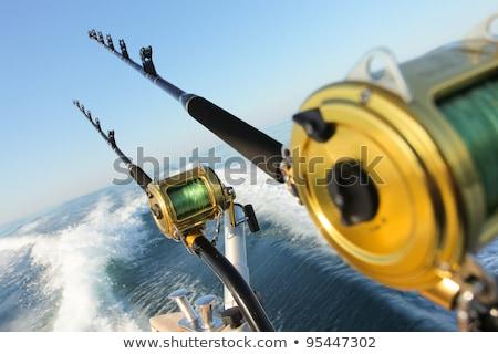 рыбак · стержень · иллюстрация · слов - Сток-фото © stuartmiles
