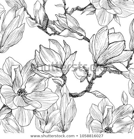рисунок карандашей белый Дать инструменты Сток-фото © peter_zijlstra