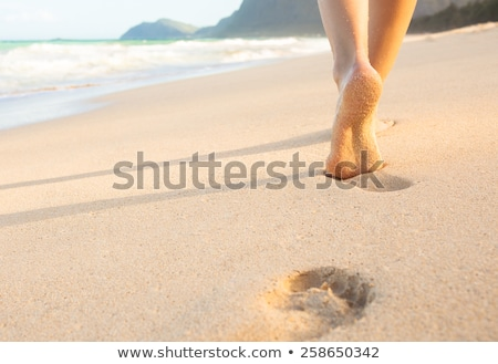 Woman on Maui coast. Stock photo © iofoto