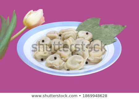 Dumplings in plate isolated. pelmeni in dish. Russian national f Stock photo © popaukropa