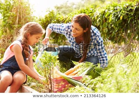 mère · fille · extérieur · fleur · souriant · heureux - photo stock © is2