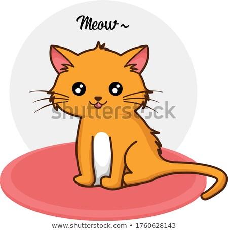 glimlachend · kat · fantastisch · huisdier · ongebruikelijk · dier - stockfoto © robuart
