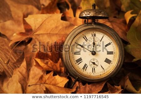 Eski çalar saat kuru yaprakları paslı Stok fotoğraf © nito