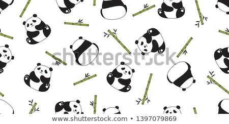 Panda bambusz illusztráció boldog természet csoport Stock fotó © colematt
