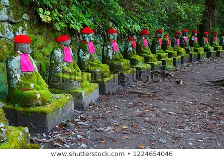 Japonia punkt orientacyjny przepaść lasu charakter czerwony Zdjęcia stock © daboost