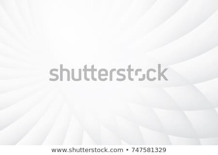 Minimális vonalak elegáns fehér absztrakt terv Stock fotó © SArts