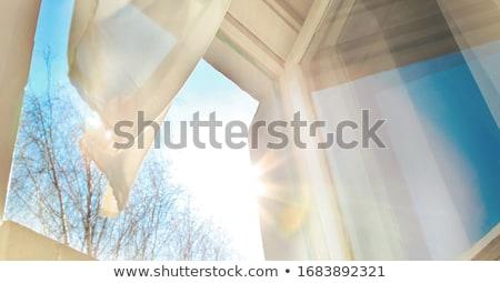 太陽 着用 眼鏡 ホット ストックフォト © Soleil