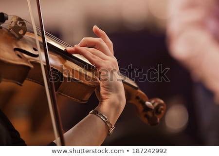 Professional female violinist playing in a concert Stock photo © Giulio_Fornasar