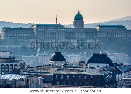 Morning view to Buda Castle and palace of the Hungarian kings in Budapest. Stock photo © artjazz