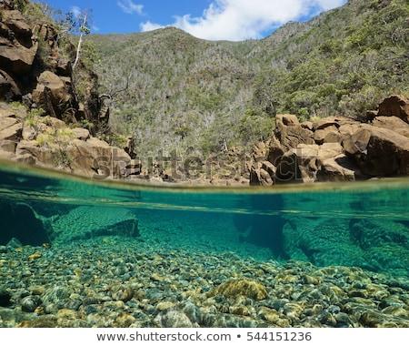 Riverbed Rocks Stock photo © THP