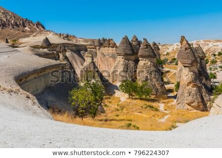 Rock Houses in Capadocia Turkey Stock photo © photoblueice