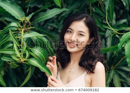 красивой азиатских девушки довольно брюнетка Сток-фото © prg0383