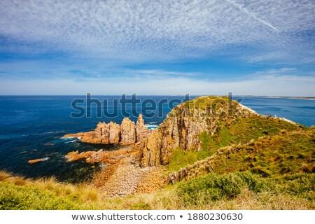 Spektakularny widoku ocean punkt wyspa Nowa Zelandia Zdjęcia stock © wildnerdpix
