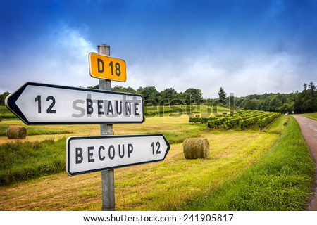 Meursault vineyards and sign Stock photo © Hofmeester