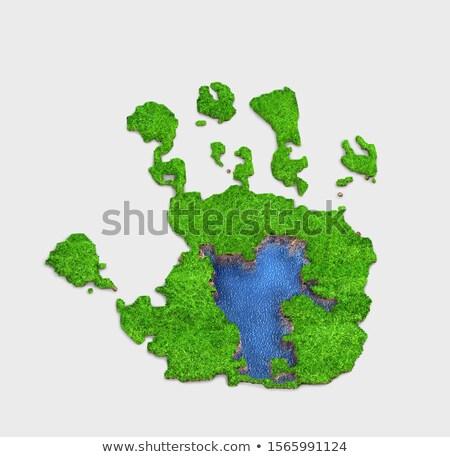 3d green grass in form of footprint stock photo © lenapix