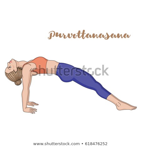 vector illustration of Yoga positions in Upward Plank Pose Stock photo © Istanbul2009
