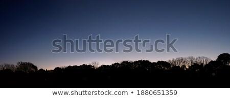 Gradation of the winter morning sunrise, Japan stock photo © shihina