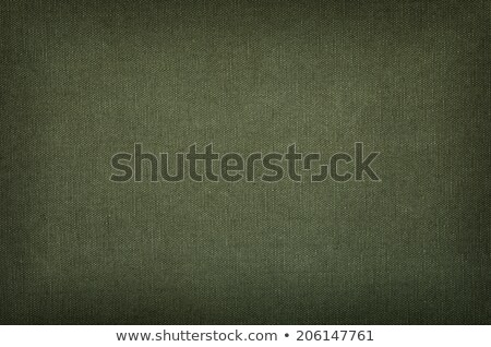 Olive green cotton texture with vignette Stock photo © Zerbor