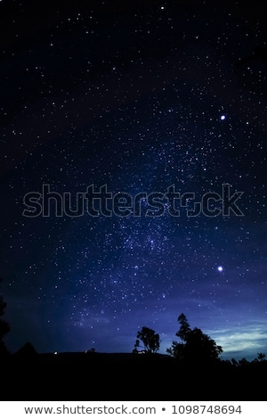 Starry night sky with satellite trail Stock photo © cherezoff