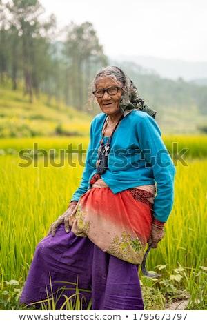 Női gazda pózol megművelt búzamező nő Stock fotó © stevanovicigor