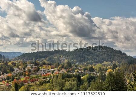 Boldog völgy Oregon festői kilátás őszi szezon Stock fotó © davidgn