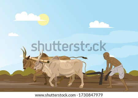 Ploughed field Stock photo © IS2