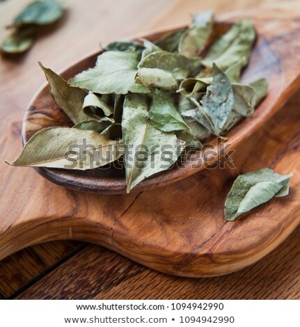 Essiccati strigliare foglie asciugare buio top Foto d'archivio © szefei
