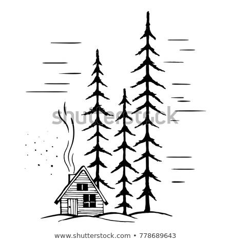 Foto stock: Cena · pinho · árvores · casa · ilustração · natureza