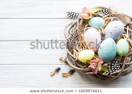 Paaseieren nest houten eieren vrolijk pasen top Stockfoto © Illia