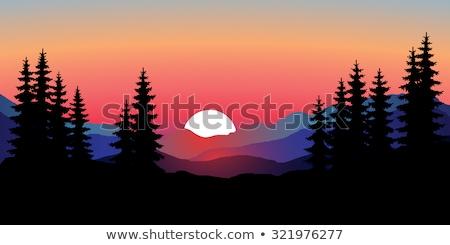 sunset over forest silhouette stock photo © vapi
