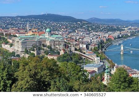 Duna folyó Budapest Magyarország kártevő víz Stock fotó © borisb17