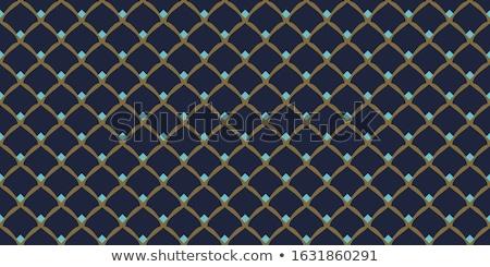 Orientalisch Muster Vektor Form Stock foto © yopixart