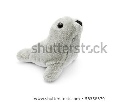 Toy Seal Stock photo © mybaitshop