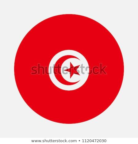 Tunísia bandeira ícone isolado branco internet Foto stock © zeffss