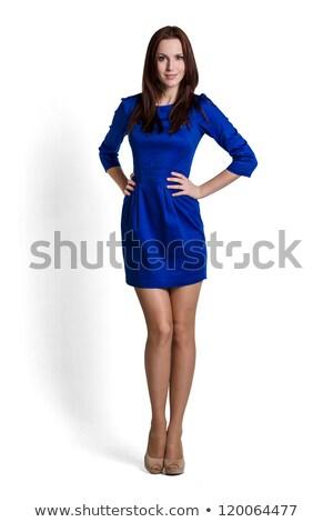 High fashion model niebieski sukienka stwarzające biały Zdjęcia stock © RuslanOmega