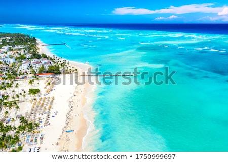 beach with straw umbrellas in punta cana Stock photo © feedough
