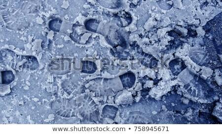 Lábnyom árnyék hó textúra szépség ugrás Stock fotó © fanfo