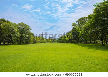 Foto stock: Buildings And Trees On Green Meadow