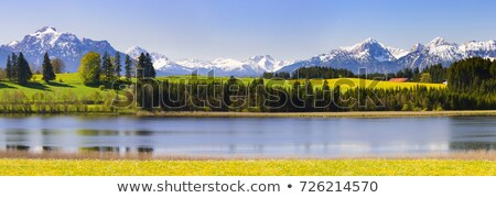 Panoramic view Alps in Bavaria Stock photo © w20er