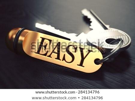 Easy Concept. Keys with Golden Keyring. Stock photo © tashatuvango