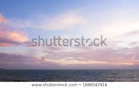 Seacoast at dawn Stock photo © All32