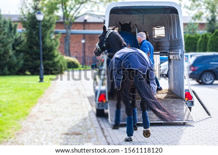 Horse and Trailer Stock photo © LAMeeks