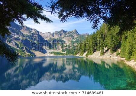 Alpesi tó nyár nap park Wyoming Stock fotó © wildnerdpix
