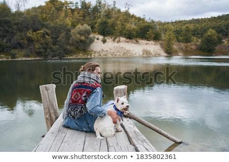 красивой брюнетка молодые собака день Сток-фото © Yatsenko
