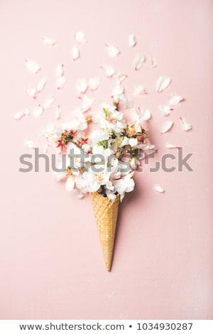 Virágok kúp kreatív csendélet fagylalt waffle Stock fotó © Fisher